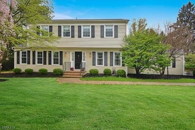 Clinton Twp. Single Family Home For Sale: 5 Sunrise Cir