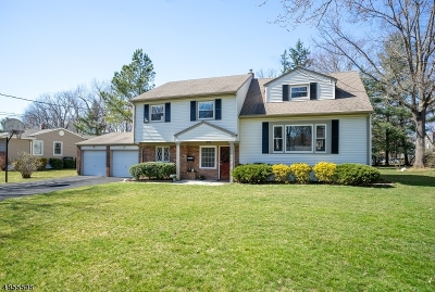 New Providence Single Family Home For Sale: 171 Hickson Dr