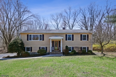 Montgomery Twp. Single Family Home For Sale: 25 Cleveland Cir