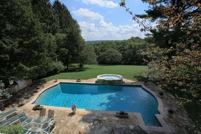 Mendham Boro, Mendham Twp. Single Family Home For Sale: 105 Mosle Rd