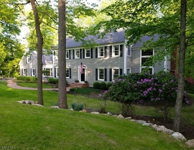 Tewksbury Twp. Single Family Home For Sale: 31 Big Spring Rd