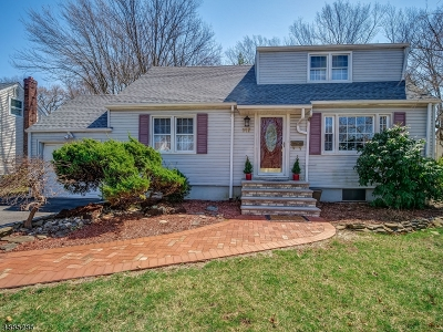 Springfield Twp. Single Family Home For Sale: 117 Wentz Ave