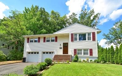 Fanwood Boro Single Family Home For Sale: 437 La Grande Ave