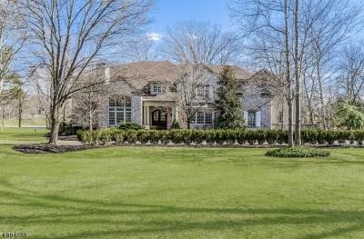 Readington Twp. Single Family Home For Sale: 20 Dogwood Drive