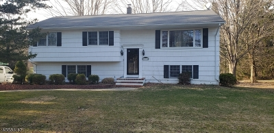 Chester Twp. NJ Single Family Home For Sale: $305,000