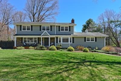 Tewksbury Twp. Single Family Home For Sale: 11 Big Spring Rd