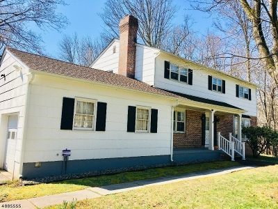 Montgomery Twp. Single Family Home For Sale: 130 Cherry Brook Dr
