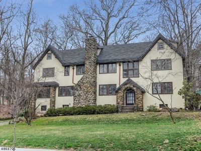South Orange Village Twp. Single Family Home For Sale: 361 N Ridgewood Rd