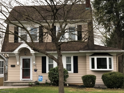 Somerville Boro Single Family Home For Sale: 299 W Summit St