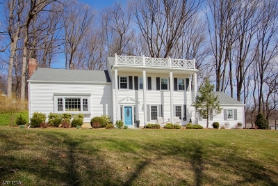 Morris Twp. Single Family Home For Sale: 5 Puddingstone Ct