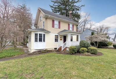 Westfield Town Single Family Home For Sale: 912 Rahway Ave