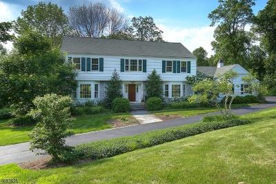 Harding Twp. NJ Single Family Home For Sale: $1,195,000