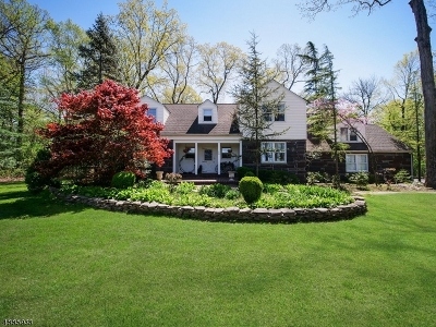 Franklin Twp. Single Family Home For Sale: 658 S Middlebush Rd