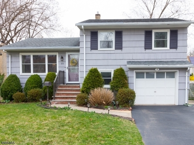 Parsippany Single Family Home For Sale: 50 Roosevelt Ave