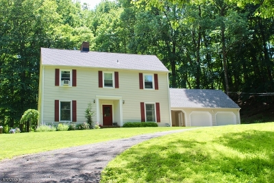 Holland Twp., Milford Boro Single Family Home For Sale: 437 Church Rd