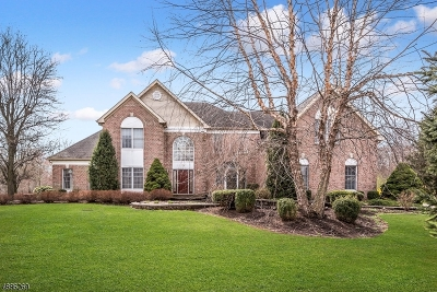 Montgomery Twp. Single Family Home For Sale: 59 Buckingham Dr