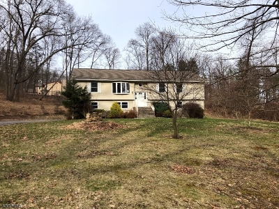 Vernon Twp. Single Family Home For Sale: 125 Lk Pochung Rd