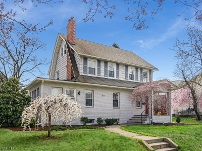 South Orange Village Twp. Single Family Home For Sale: 362 Prospect St