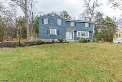 Bridgewater Twp. Single Family Home For Sale: 989 N Shore Dr
