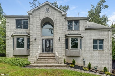 Berkeley Heights Single Family Home For Sale: 315 Emerson Ln