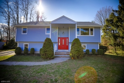 East Hanover Twp. NJ Single Family Home For Sale: $569,000