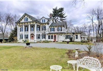 Hillsborough Twp. Single Family Home For Sale: 385 Homestead Rd