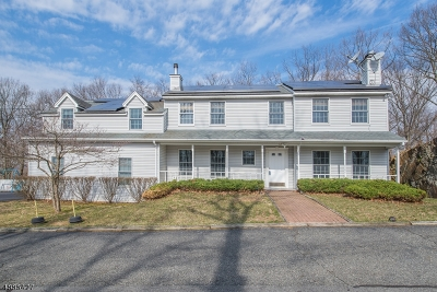 Boonton Twp. Single Family Home For Sale: 12 Berton Rd