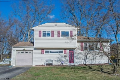 Wharton Boro Single Family Home For Sale: 8 Cornell St