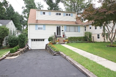 West Caldwell Twp. Single Family Home For Sale: 17 Park St