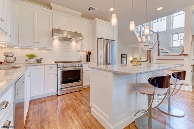 Summit Condo/Townhouse For Sale: 73 Franklin Pl