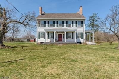 Hillsborough Twp. Single Family Home For Sale: 1101 River Rd
