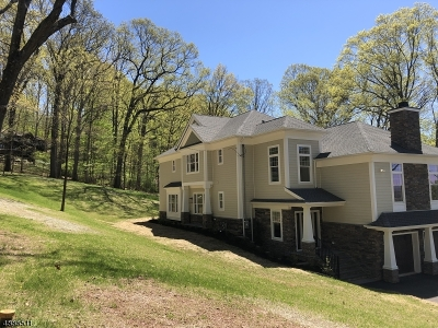 Martinsville Single Family Home For Sale: 544 Steele Gap Rd