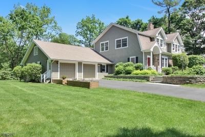 Chatham Twp Single Family Home For Sale: 12 Pine Street