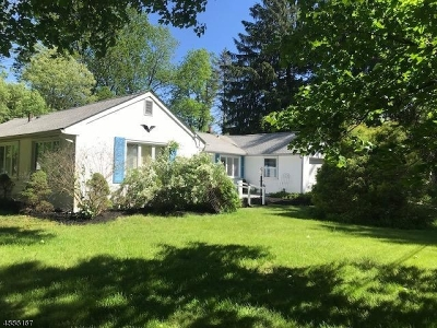 Boonton Twp. Single Family Home For Sale: 3 Janet Rd