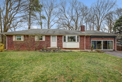 Cranford Twp. Single Family Home For Sale: 44 Roselle Ave