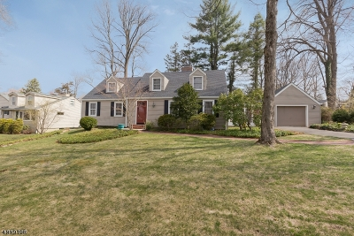Morristown Town, Morris Twp. Single Family Home For Sale: 15 Turtle Rd