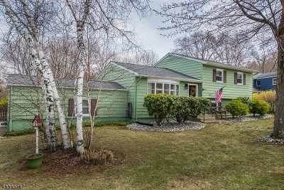 Roxbury Twp. Single Family Home For Sale: 25 Pleasant Hill Rd