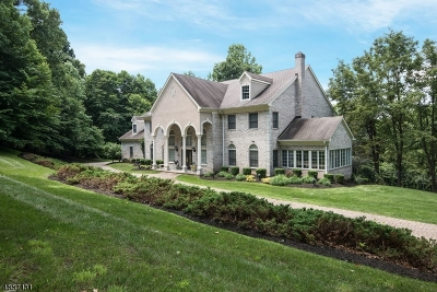 Chester Twp. NJ Single Family Home For Sale: $1,499,000