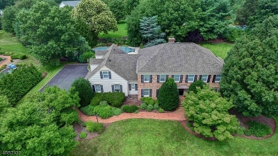 Montgomery Twp. Single Family Home For Sale: 22 Canterbury Ln