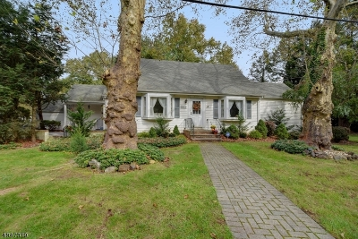 Scotch Plains Twp. Single Family Home For Sale: 1215 Sunnyfield Ln