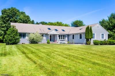 Readington Twp. Single Family Home For Sale: 119 Rockafellows Mill Rd