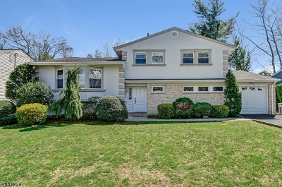 Springfield Twp. Single Family Home For Sale: 121 Laurel Dr