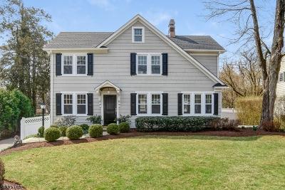 Bernards Twp. Single Family Home For Sale: 17 Madisonville Rd