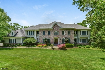 Morris Twp. Single Family Home For Sale: 7 Pioneers Lane