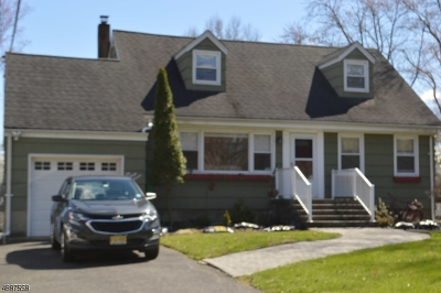 Parsippany Single Family Home For Sale: 237 Vail Rd
