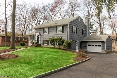 Cranford Twp. Single Family Home For Sale: 218 Pawnee Road