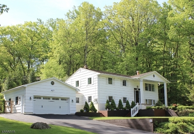 Byram Twp. Single Family Home For Sale: 66 Sleepy Hollow Rd