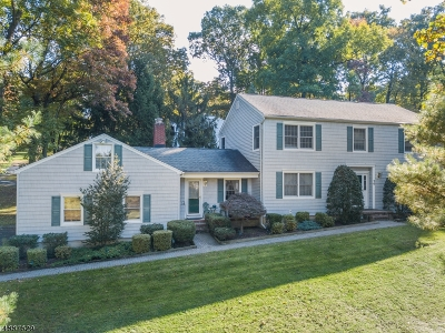 Morristown Town, Morris Twp. Single Family Home For Sale: 70 Alexandria Rd