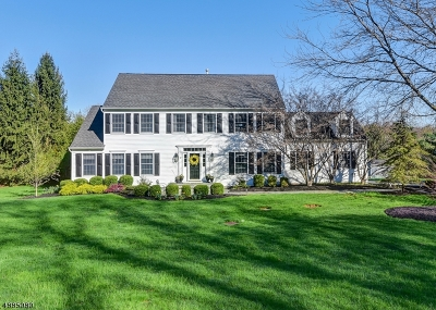 Chester Twp. NJ Single Family Home For Sale: $760,000