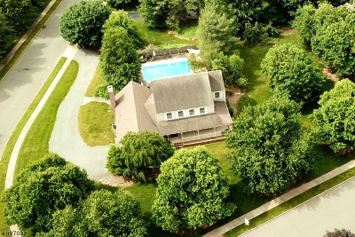 Montgomery Twp. Single Family Home For Sale: 47 Carriage Trl